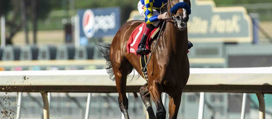 Expert Horse Racing Picks at Santa Anita